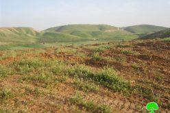 المزروعات الحقلية في الأغوار الشمالية  بين مطرقة انحباس الأمطار وسندان التدريبات العسكرية الإسرائيلية