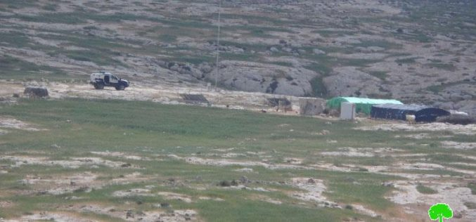Attacks on sheep herds in Yatta town Hebron governorate