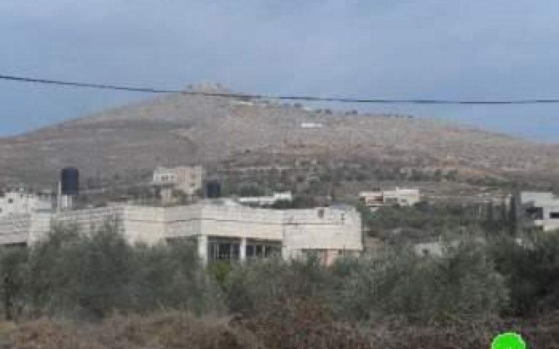 إتلاف 34 شجرة زيتون في قرية عينابوس في محافظة نابلس