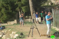 In an unprecedented activity, Israeli colonists break into Burak Suliman (King Solomon's pools) in area A in Al-Khadir city / Bethlehem governorate