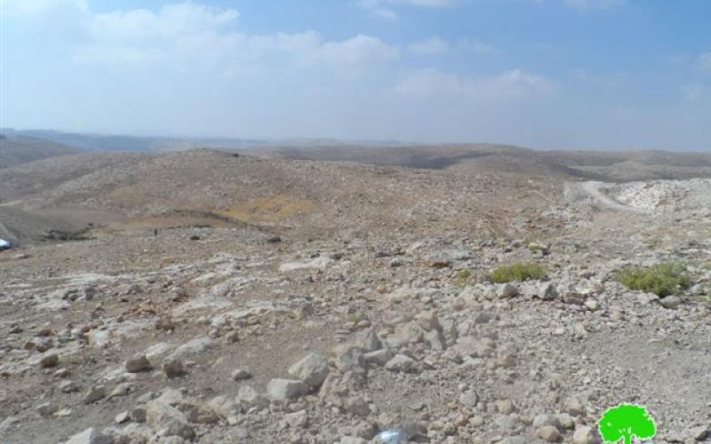 Shepherds denied access to pastures by the occupation in Yatta town –Hebron governorate