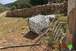 إتلاف 24 غرسة زيتون وإعطاب ثلاثة خزانات مائية في بلدة قراوة بني حسان