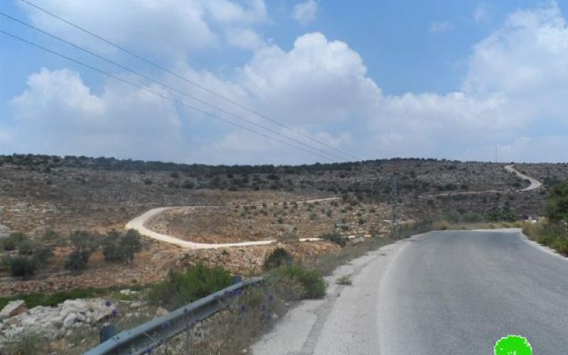 Land Takeover in Salfit <br> Israeli Occupation Forces Extends the Seizure of 381 Dunums of the Lands of the Villages of Siniria and Al Zawiya in Qalqilia Governorate