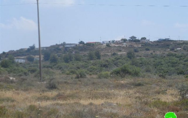 Nofei Manheim is undergoing expansion on lands of Jinsafut village