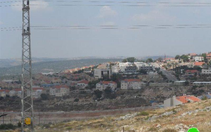 """مستعمرو مستعمرة """" رفافا"""" يحرقون 22 شجرة في قرية حارس / محافظة سلفيت"""