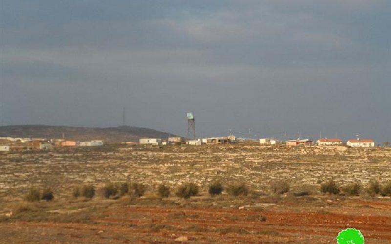 """مستعمرو البؤرة الاستعمارية """" هيوفال"""" يتلفون 23 شجرة لوزيات في قرية قريوت"""