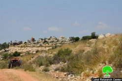 Preparations for Establishing a New Colony west of Salfit city