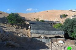 The Israeli occupation notifies families of eviction and demolition