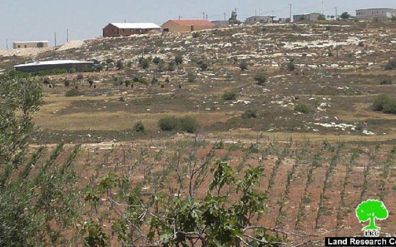 مستعمرو شيلو يشرعون في الاستيلاء على اراض جديدة من قرية جالود