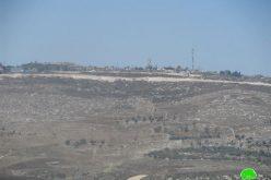 Expansion of Bracha on Burin lands