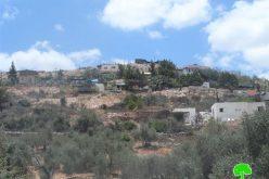 """مستعمرو مستعمرة """" معاليه إسرائيل"""" يقطعون عدد من الأشجار في بلدة  قراوة بني حسان"""
