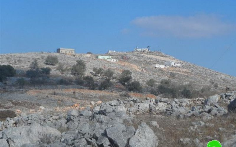 Pastures and olive trees burned down in areas classified B in Bourin village
