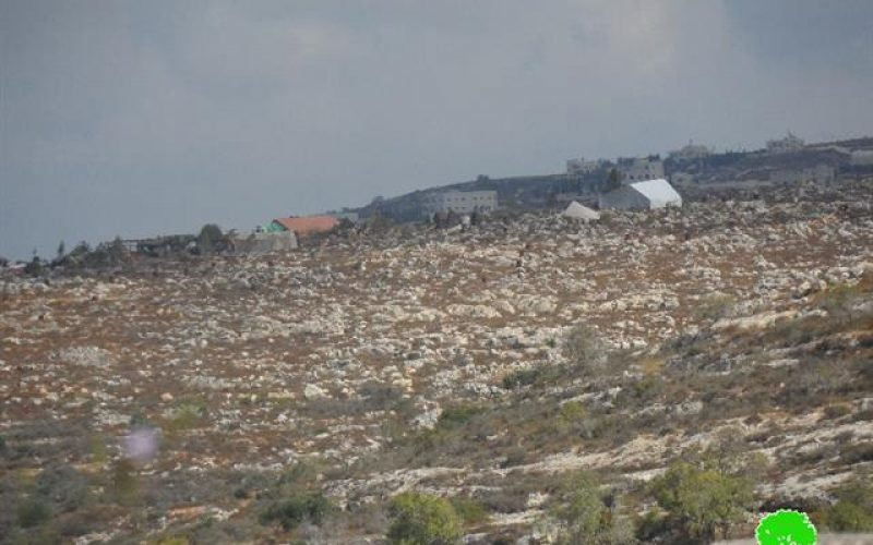 New outposts established in Kfar Tapuah
