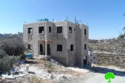 Demolition and stop work orders on residences in Beit Kahil