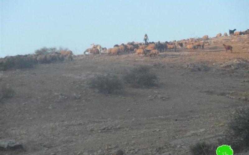 الاحتلال الإسرائيلي يمنع تأهيل برك وآبار مائية في منطقة المالح