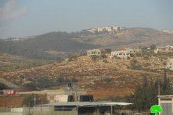 مستعمرون يسيطرون على مساحات جديدة من أراضي قرية دير الحطب المزروعة بالزيتون