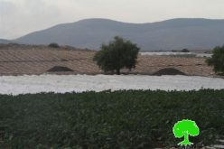 The Israeli occupation confiscates agricultural equipments from Sahel al- Bikaia