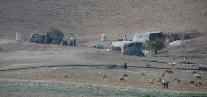 "Under the pretext of military training, ""Expel and displacement"" affects the Bedouin communities in the northern Ghoor"