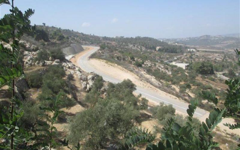 الذريعة الامنية تهدد أراضي منطقة وادي كريمزان في مدينة بيت جالا