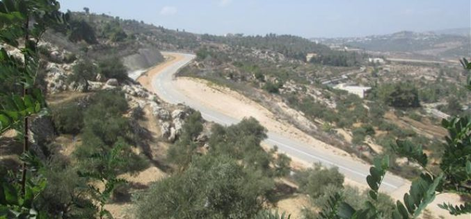 The Israeli security pretext threatens the land of Cremisan in Beit Jala city