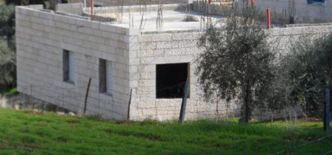 الاحتلال يخطر بوقف العمل في 4 مساكن  في  قرية تقوع / محافظة بيت لحم