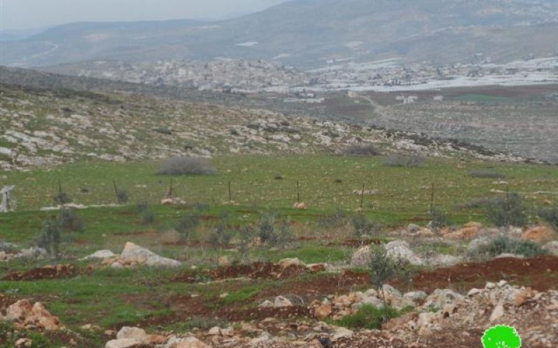 Eviction order on tens of dunums in Khirbet Um al-Kbaish