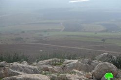 Confiscating water tanks and forest saplings from Khirbet Ainon