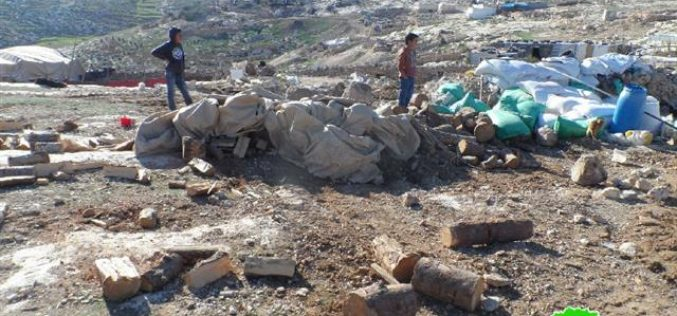 The Israeli occupation demolishes agricultural tents in Yatta