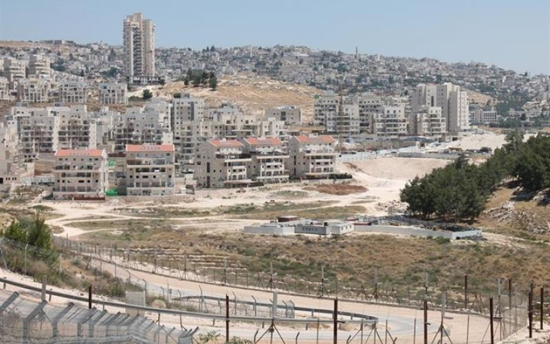 """""""During the Past Four Years"""", <br>  Accumulated 184 million NIS, to Subsidize the Settlement Project on the oPt"""
