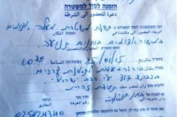 Colonist rams a sheep herd leaving three heads dead in Hebron