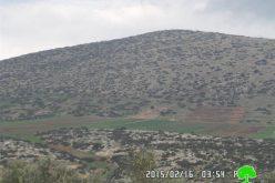 إخطار قطعة ارض بالإخلاء  مزروعة بـ 210 غراس زيتون في قرية التياسير