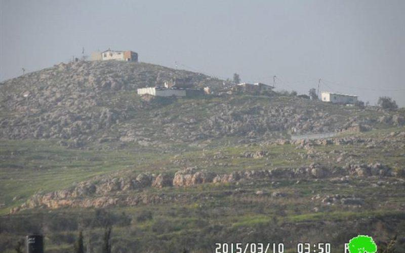 """مستعمرو """" جفعات رونين"""" يتلفون 35 شجرة زيتون في قرية بورين / محافظة نابلس"""