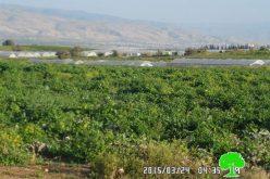 الاحتلال الاسرائيلي يصادر 504 متر من الأنابيب الناقلة للمياه في قرية عين البيضا