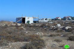 مستعمرون يعتدون على أراضي زراعية في وادي الأمير شمال حلحول