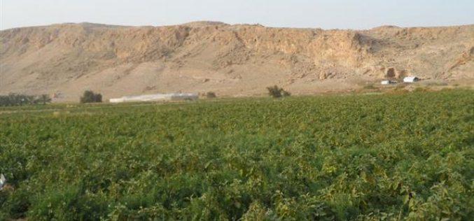 الاحتلال الإسرائيلي يهدم أربعة  مساكن في قرية الجفتلك / محافظة أريحا