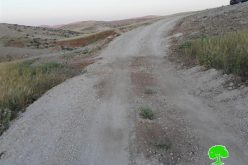 A final demolition order on a road in the Hebron village of Yatta