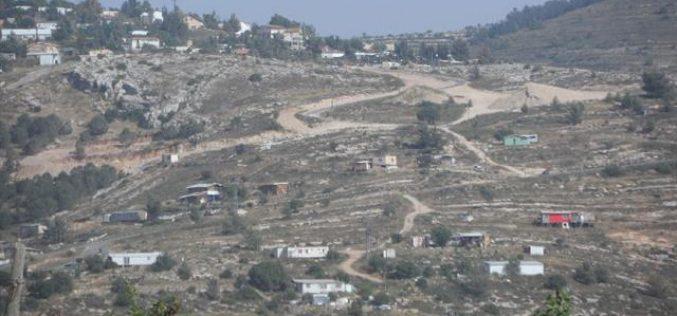 مستعمرون يحرقون 50 دونماً من الأراضي زراعية واشجار زيتون في قرية الجبعة
