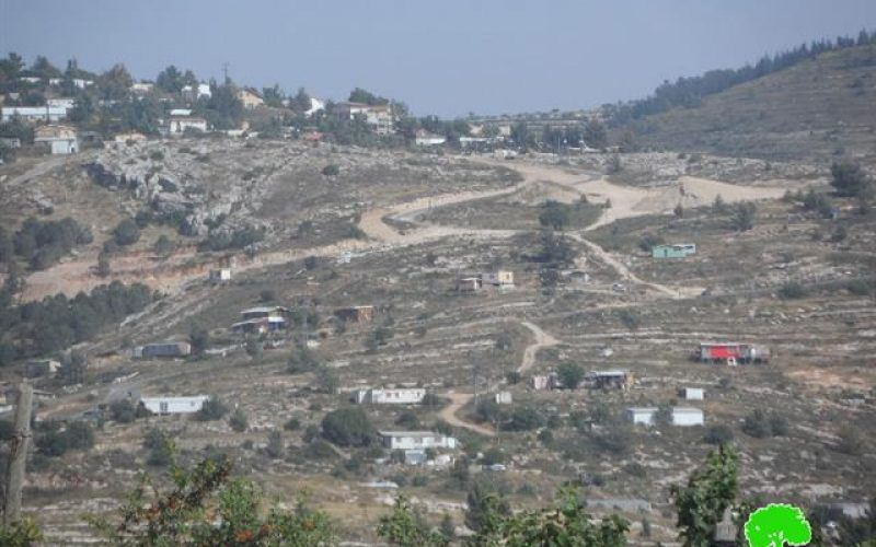 Colonists set 50 agricultural dunums ablaze in Al Jab'a village