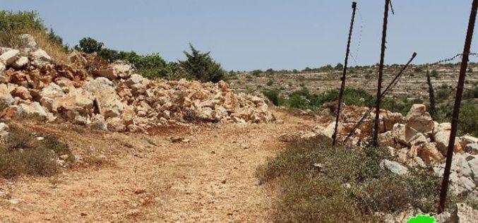 هدم بئر زراعي و تجريف 2 دونم في واد ابو حسن في قرية الخضر / محافظة بيت لحم