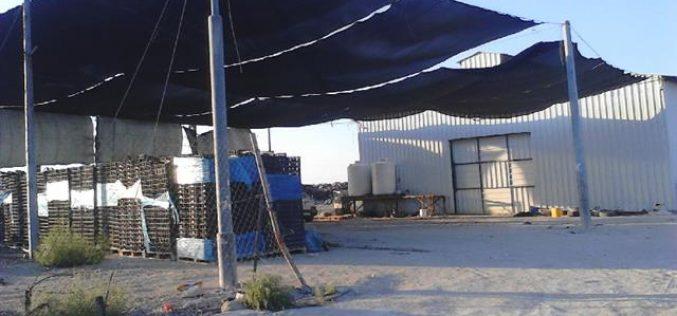 الاحتلال الاسرائيلي يخطر بهدم محطة  لتعبئة التمور في مدينة أريحا