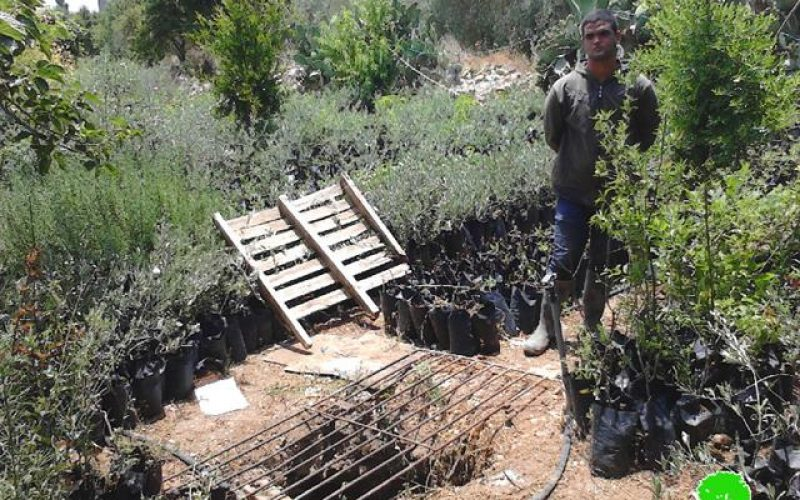 Demolition orders on water cisterns in the Jenin village of Ta'nak