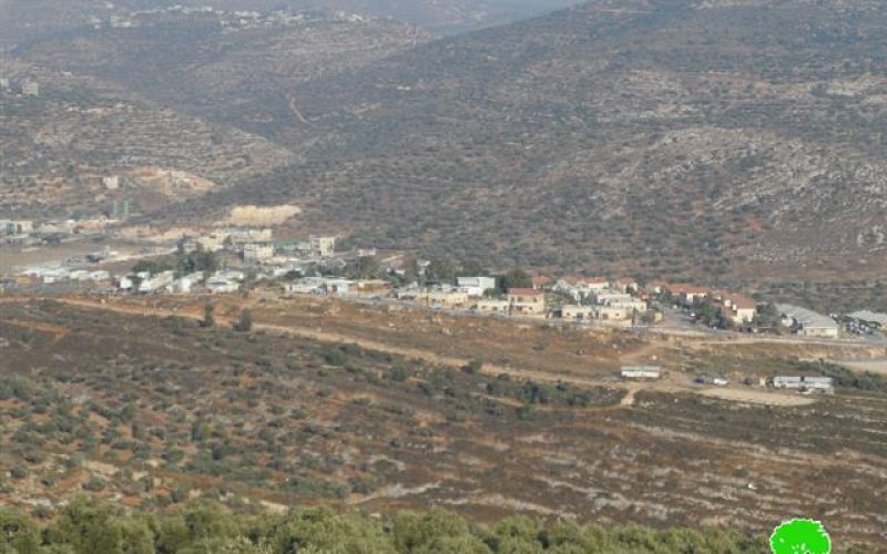 Eviction order on lands from the Salfit area of Wad Qana