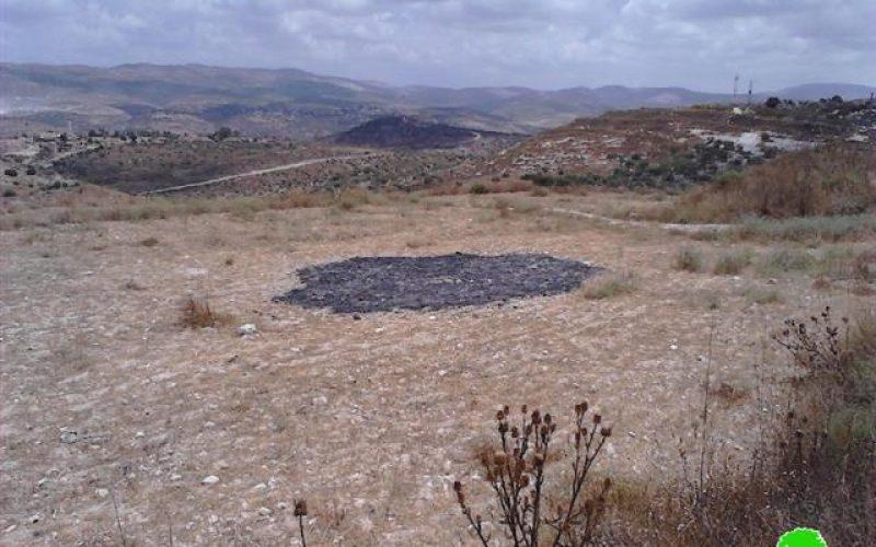 """مستعمرو مستعمرة """" عناب"""" يحرقون محاصيل القمح في قرية كفر اللبد"""
