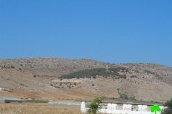 Eviction order on 111 dunums in the Tubas village of Ainon