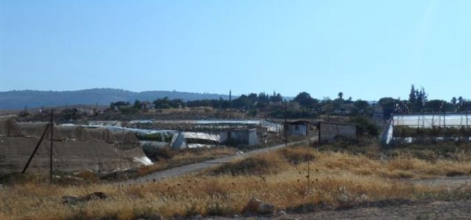 إخطار بتمديد سريان مصادرة 15 دونماً من أراضي منطقة لفجم شرق بلدة عقربا