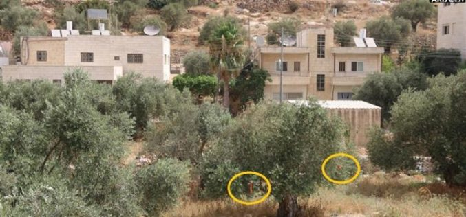 Israel to resume the construction of the wall on lands of Beit Jala city.