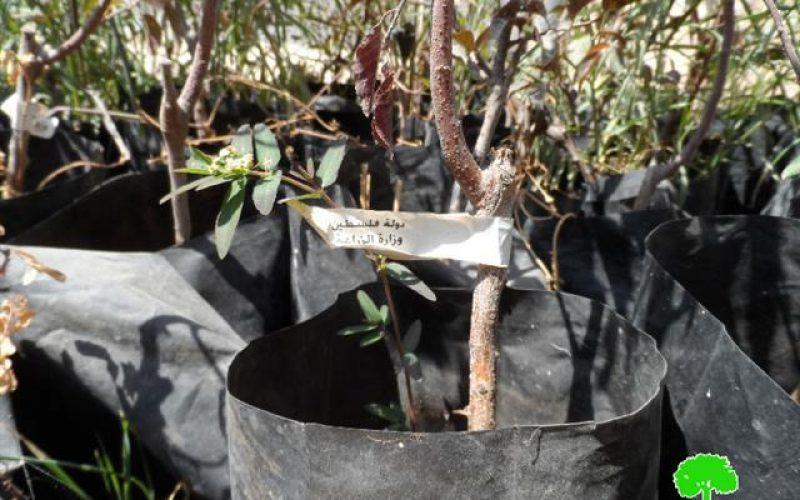 إخطار بوقف العمل في مشروع خزان مياه بقرية أبو شبان – بلدة يطا