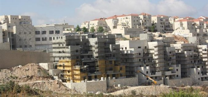 Everything is possible for the benefit of the Israeli settlers