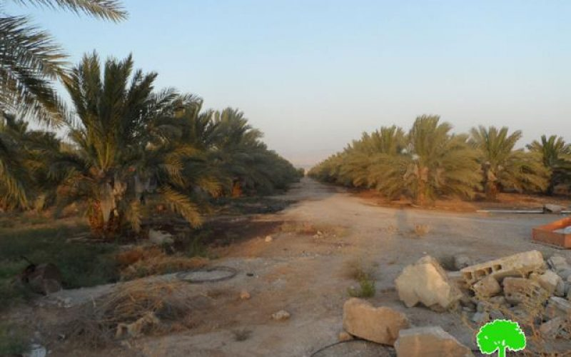 The Israeli occupation demolishes an agricultural room in Jericho