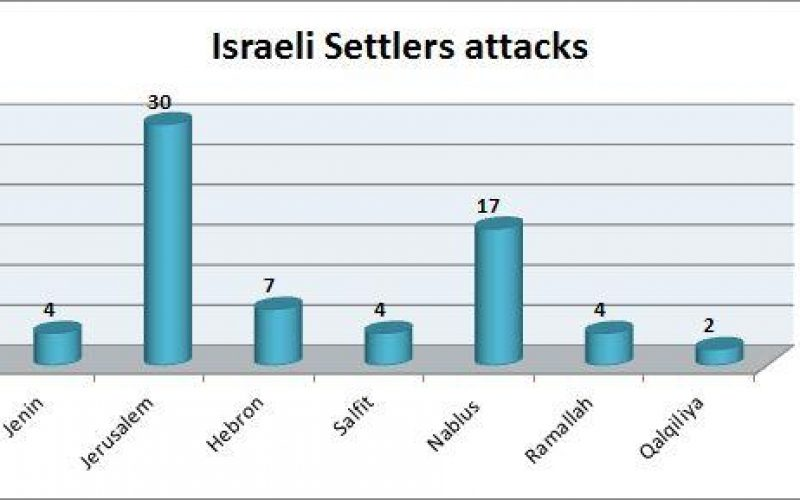 Israeli Violations in the Occupied Palestinian Territory –August 2015